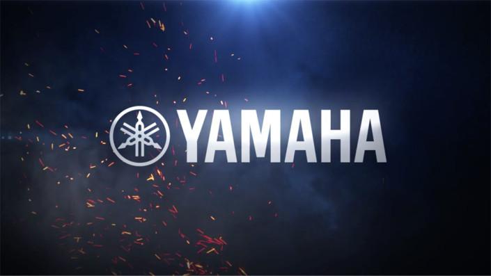 Yamaha: DXR/DSR Speakers